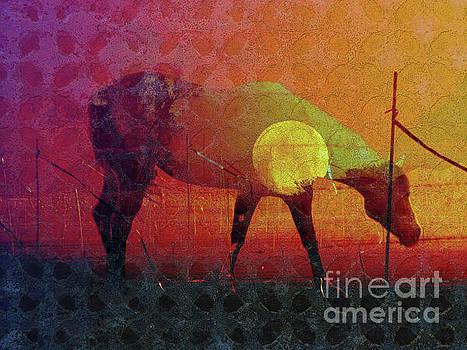 Iron Horse by Robert Ball