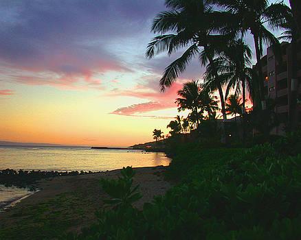 Island Sunset by Angie Hamlin