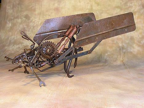 Katydid by Chris Jaworski