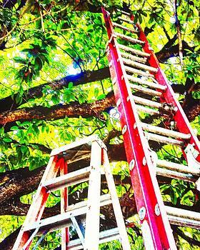 2 Ladders by Arturo Cisneros