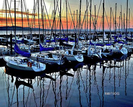 Lake City Marina by Susie Loechler