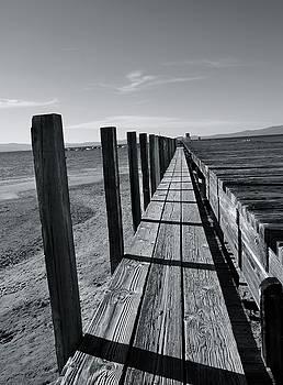 Boardwalk to the Lake by Alex King