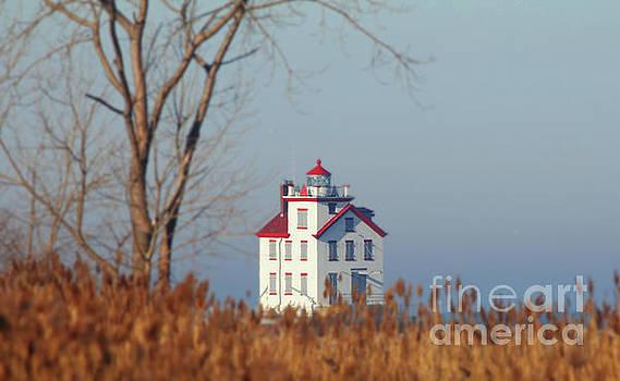 Lighthouse by Debbie Parker