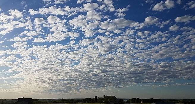 Mackerel Sky by Caryl J Bohn