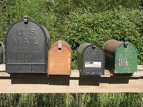 Mail Boxes  by Diane Greco-Lesser