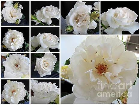 Margaret Rose by Joyce Woodhouse