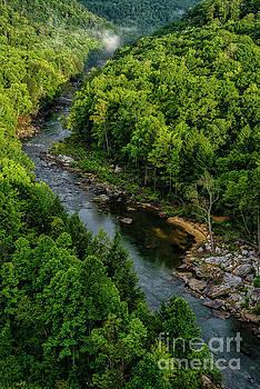 Meadow River Aerial by Thomas R Fletcher