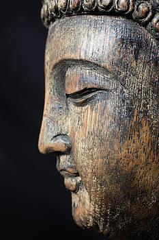 Meditating Buddha by Bernice Williams