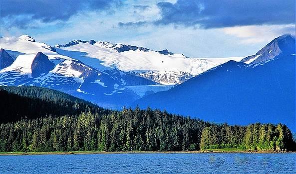 Mendenhall Glacier Park by Martin Cline