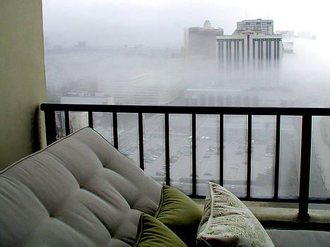 Misty Morning by Barbara Siegel