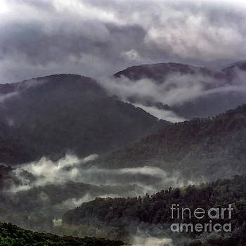 Misty Mountains by Thomas R Fletcher