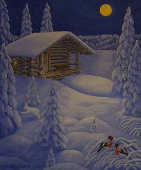 Moonlight by Veikko Suikkanen