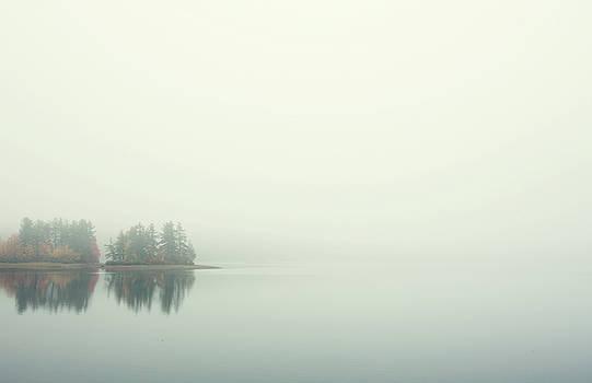 Morning Fog by Sue Collura