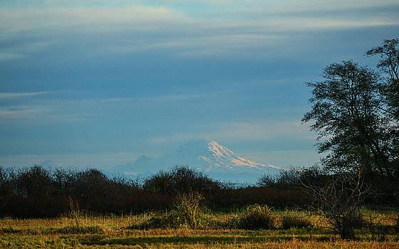 Ronda Broatch - Mount Rainier in the Distance