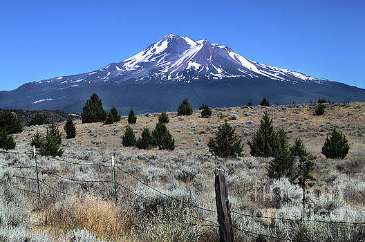 Mount Shasta by Gregory Dyer