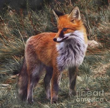 Sarah Kirk - Mr Fox