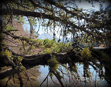 Mt. Lassen and Manzanita Lake by Joy Patzner