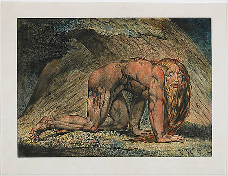 Nebuchadnezzar by William Blake