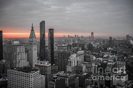 Roman Gomez - New york city