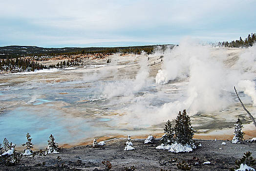 Harvey Barrison - Norris Geyser Basin