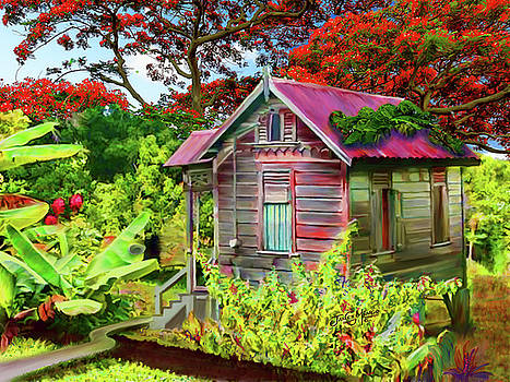 Old House Guyana by James  Mingo