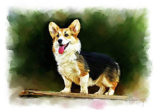 Pet Dog Portrait by Michael Greenaway