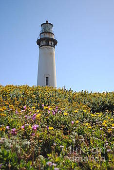 Pigeon Point Lighthouse by Nancy Chambers