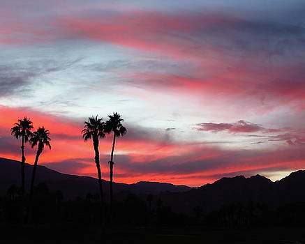 Pink Sky Sunset From A Desert Trip by Desiderata Gallery