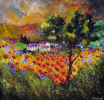 Poppies 8871 by Pol Ledent
