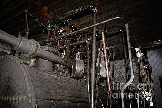 Puffing Billy Train by Doc Braham