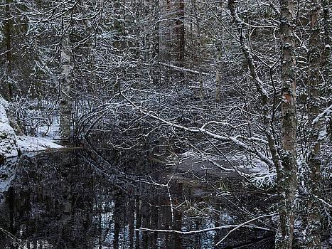 Reflections by Jouko Lehto