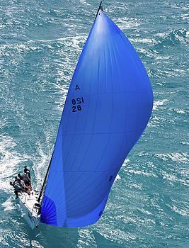 Steven Lapkin - regatta aerial