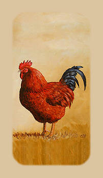 Crista Forest - Rhode Island Red Rooster