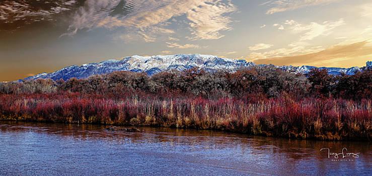 Rio Grande Bosque by Tony Lopez
