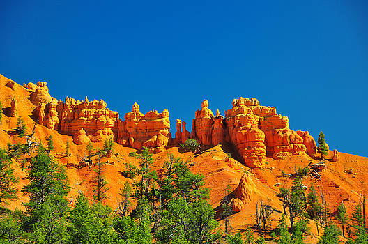 Rock formations in red canyon park in Utah. by Jay Mudaliar