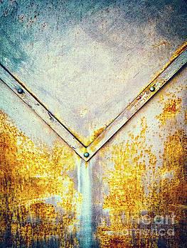 Silvia Ganora - Rusty gate detail