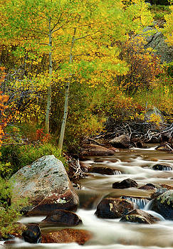 Saint Vrain Creek Number One by Jeff Jewkes