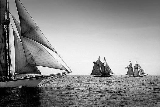 Schooner Race by Fred LeBlanc