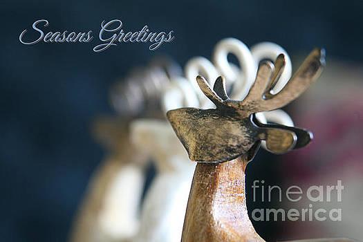 Seasons Greetings  by Lynn England