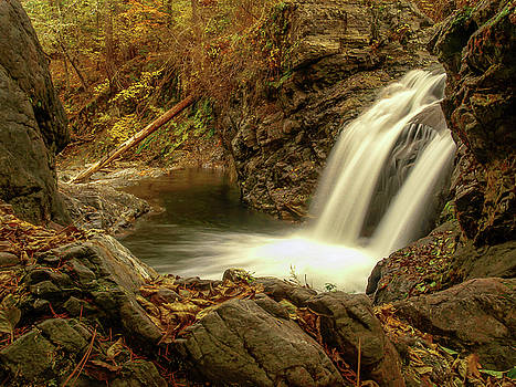 Shackleford Falls by Michele James
