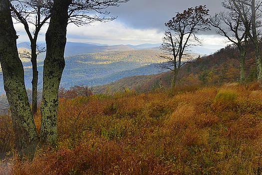 Shenandoah Autumn by Stephen  Vecchiotti