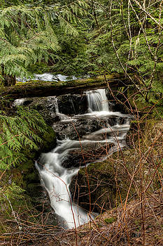 R J Ruppenthal - Small Stream Waterfall