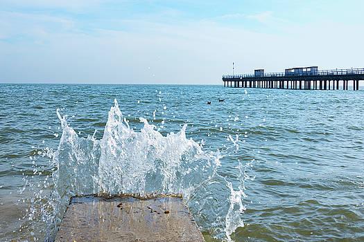Splash by Svetlana Sewell
