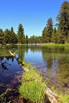 Spring Creek Oregon by David Crockett