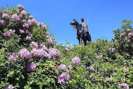 Statue of 1st Duke of Wellington at Round Hill Aldershot by Paul Felix