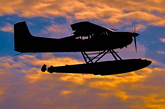 Sunset Flight 2 by Brian Stevens