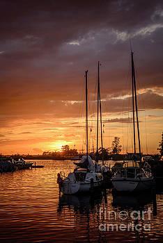 Compuinfoto - sunset in the harbor of de veenhoop in holland