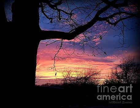 Sunset by Rabiah Seminole
