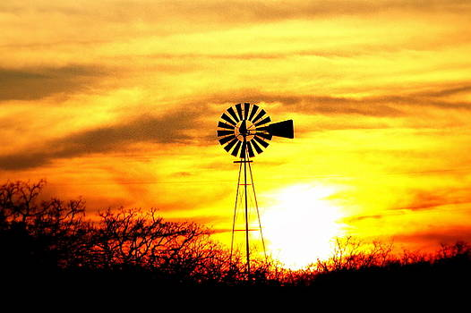 Texas Sunset by Billie Earley