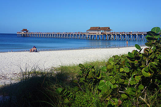 The Historic Naples Pier by Robb Stan